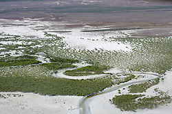 Mangroves line a narrow channel where water empties into Roebuck Bay
