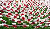 Duke of Edinburgh Field of Remembrance
