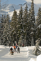 Families enjoy the trails at Whistler Olympic Park, near Whistler, BC Canada