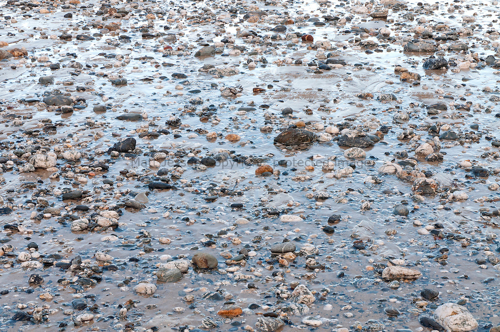 Low Tide Pebbles