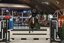 Team LRV Leest, Huybrechts Julie, Mirellahens<br /> KBC Dream Team Cup<br /> Vlaanderens Kerstjumping Memorial Eric Wauters - Juming Mechelen 2016<br /> © Dirk Caremans<br /> 26/12/2016er