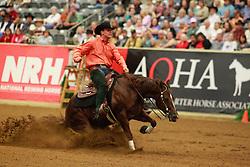 Heule Hubertus (NED) - Crome Shiner<br /> Alltech FEI World Equestrian Games <br /> Lexington - Kentucky 2010<br /> © Dirk Caremans
