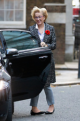 © Licensed to London News Pictures. 29/10/2018. London, UK. Leader of the House of Commons Andrea Leadsom arriving in Downing Street for a cabinet meeting, ahead of the Chancellor of the Exchequer Philip Hammond's autumn budget statement this afternoon. Photo credit : Tom Nicholson/LNP