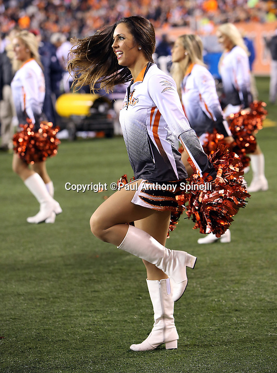 The Cincinnati Bengals cheerleaders perform a dance routine before the 2015 week 10 regular season NFL football game against the Houston Texans on Monday, Nov. 16, 2015 in Cincinnati. The Texans won the game 10-6. (©Paul Anthony Spinelli)