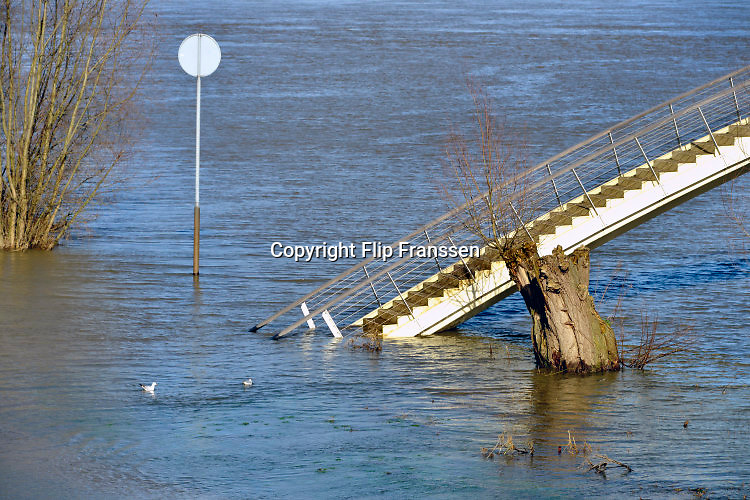 Nederland, Nijmegen, 15-02-2016Het waterpeil van de rivier de Waal stijgt weer. Het voetgangersbruggetje, wandelbrug de Ooijpoort dat Nijmegen verbindt met de stadswaard in de Ooijpolder is niet meer te gebruiken en de uiterwaarden lopen onder tot aan de dijk. Het vee is naar hoger land gedreven. Foto: Flip Franssen/Hollandse Hoogte