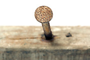 head of an old rusty nail in a wooden beam