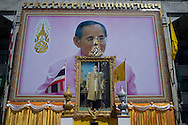 Photographs of the King of Thailand, in Bangkok, Thailand. PHOTO TIAGO MIRANDA