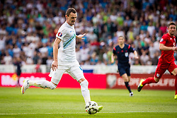 Milivoje Novakovic of Slovenia during the EURO 2016 Qualifier Group E match between Slovenia and England at SRC Stozice on June 14, 2015 in Ljubljana, Slovenia. Photo by Grega Valancic