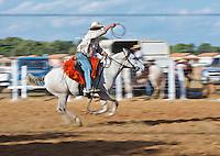 Pantaneiro Roping Cow. Matto Grosso, Brazil, Isobel Springett