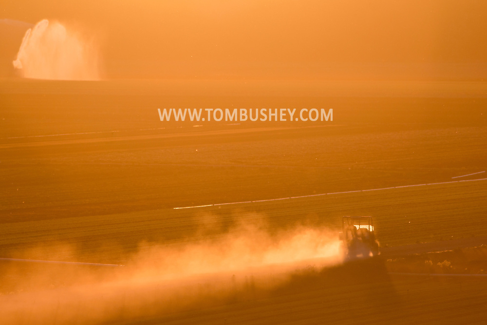 Dust billows up from the road as a vehicle crosses Black Dirt fields at sunset  in Goshen, New York. Irrigation water is sparying on the fields in the background at left. The spring has been very dry so far in Orange County.