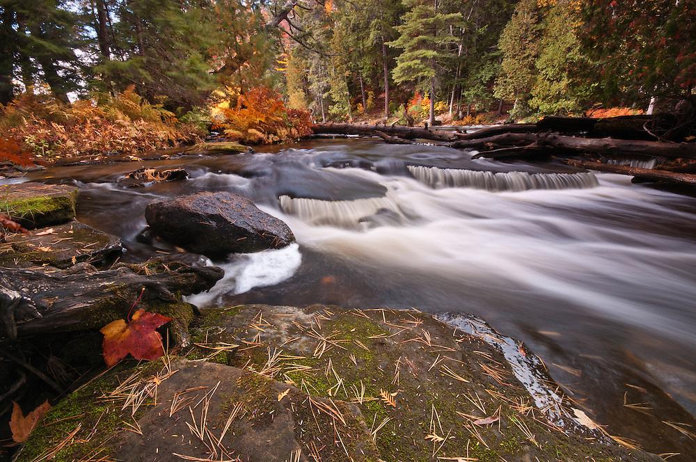 Lower Tahqamenon Falls,<br /> Michigan's Upper Peninsula