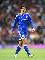 Peter Whittingham, Cardiff City.