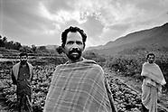 Rice farmers in Orissa