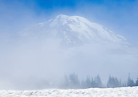 The top of Mount Rainier peaking up through the mist above Spray Park in Mount Ranier National Park, Washington, USA.