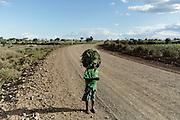 Giovane contadino,Ethiopia 16 settembre 2014.  Christian Mantuano / OneShot