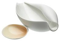 smooth sea shells porcelain