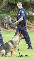 Wellington-Search for armed offender after police dog shot, Waitangirua