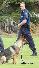 Wellington-Search for armed offender after police dog shot, Waitangirua