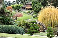 Japanese Garden Bridge and Traditional House at The Huntington Botanical Gardens, San Marino, California