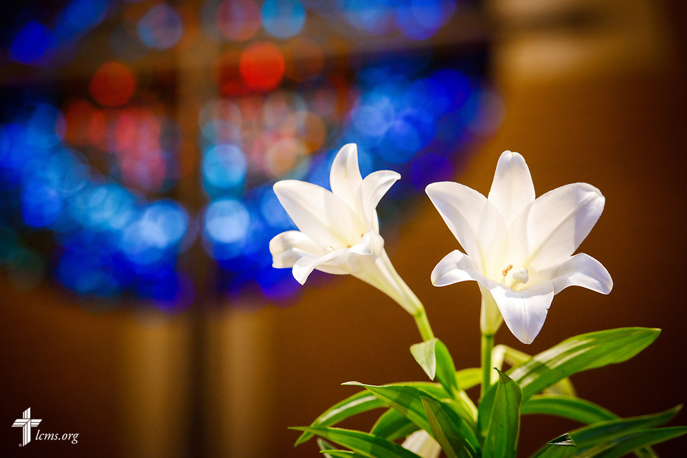 Easter church art at Peace Lutheran Church, Sr. Louis, on Saturday, March 31, 2018. LCMS Communications/Erik M. Lunsford