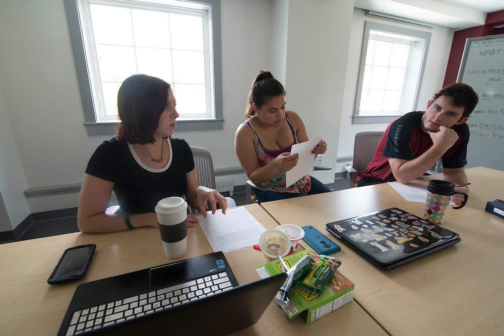 Photos from several meetings with undergraduate student researchers during the summer of 2016.
