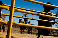 Cowboys watch and wait their turn during the the annual rodeo on the Tohono O'odham Native American reservation in Sells, Arizona, on Saturday, Feb. 2, 2008. The rodeo has been taking place for 70 years and is the largest Indian rodeo in Arizona.