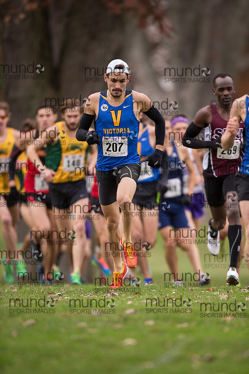 Olivier Collin of the Victoria Vikes runs in the men's  10K Run at the 2013 CIS Cross Country Championships in London Ontario, Saturday,  November 9, 2013.<br /> Mundo Sport Images/ Julie Robins