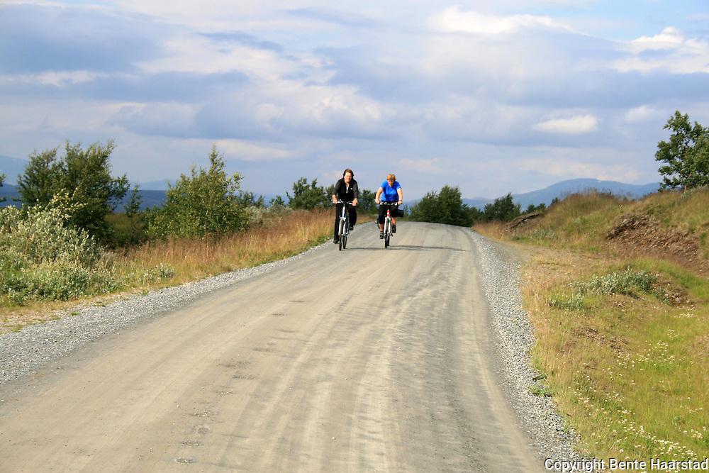 syklister pOE veg mot Riasten, Reitanvegen.