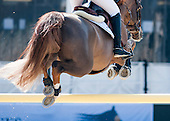 April 23 - CSI3* 1.45m (10.50hrs)