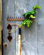 Garden rake with barn door
