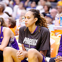 24 August 2014: Phoenix Mercury center Brittney Griner (42) is seen on the bench during the Phoenix Mercury 93-68 victory over the Los Angeles Sparks, in a Conference Semi-Finals at the Staples Center, Los Angeles, California, USA.