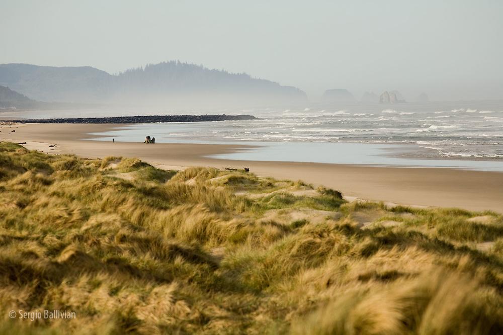 Beach and coastline on the Pacific Ocean near Florence, Oregon
