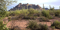 Ironwood National Monument Ironwood National Monument. Near Raggedtop.