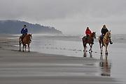 Horseback riding, Washington Coast