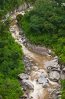 RIO DE LOS SOSAS, RESERVA NATURAL PROVINCIAL LOS SOSAS, SELVA TUCUMANA O REGION MERIDIONAL DE LA YUNGA, PROV. DE TUCUMAN, ARGENTINA