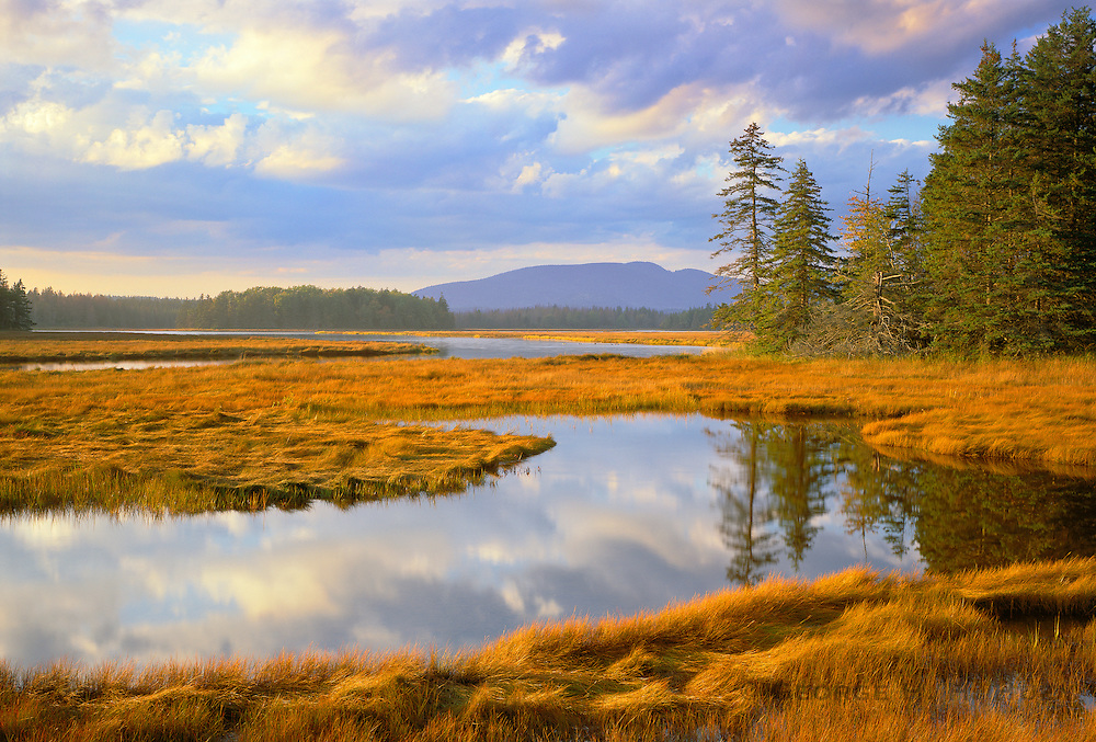0901-1014LVT ~ Copyright: George H. H. Huey ~ Bass Harbor Marsh with Western Mountain in distance. Mt. Desert Island. Acadia National Park, Maine.