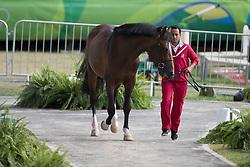 Armstrong van de Kapel<br /> Horse Inspection Jumping<br /> Olympic Games Rio 2016<br /> © Hippo Foto - Dirk Caremans<br /> 12/08/16