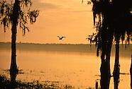 1965 Cross Creek, Florida