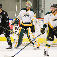 3rd year goalie Dawson MacAuley (31) of the Regina Cougars in action during the Men's Hockey Shine On Game on December 2 at Co-operators arena. Credit: Arthur Ward/Arthur Images