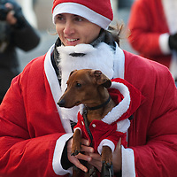NOALE, ITALY - DECEMBER 18:  One of the participants  dressed as Father Christmas hold her dog as she take part in the Noale Santa Run on December 18, 2011 in Noale, Italy. Close to two thousand people participated in the third annual Noale Santa Run, one of the largest non competitive Santa Run in Italy.