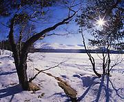Winter starburst over a frozen Loch Morlich, Cairngorms, Central Highlands.