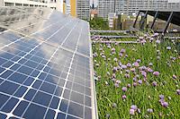 24 MAY 2005, BERLIN/GERMANY:<br /> Solaranlage auf dem Dach des Willy-Brandt-Hauses<br /> IMAGE: 20050524-01-021<br /> KEYWORDS: Photovoltaik, Sonnenenergie, Solarenergie, Umwelt, environment, Energie, Strom, Blumen, flowers, wiese, Dachbegruenung, Dachbegrünung