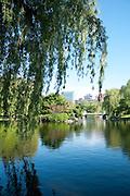 The Public Garden, Boston, Massachusetts, New England