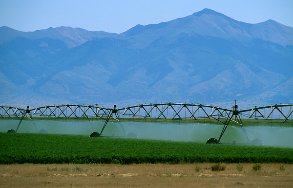 Stock photo of irrigation machinery watering a very large area of land and crops