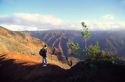 Hiking, Waimea Canyon, Kauai, Hawaii<br />