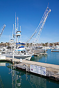 Boats In Dana Point Harbor