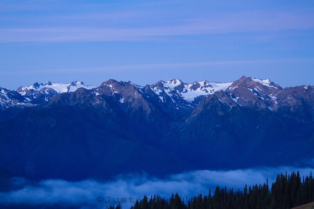 Hurricane Ridge, Olympic National Park, WA.