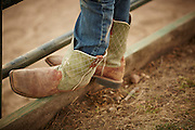 Kid's boots, on fence, close-up, county fair rodeo