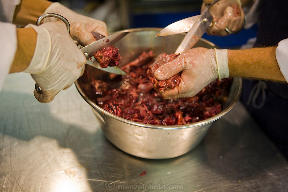 Chefs cut meat in the kitchen of the famous El Bulli restaurant near Rosas on the Costa Brava in Northern Spain.