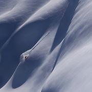 Freeride, Arlberg, Vorarlberg, Winter, Christian Schnabel, Stuben am Arlberg